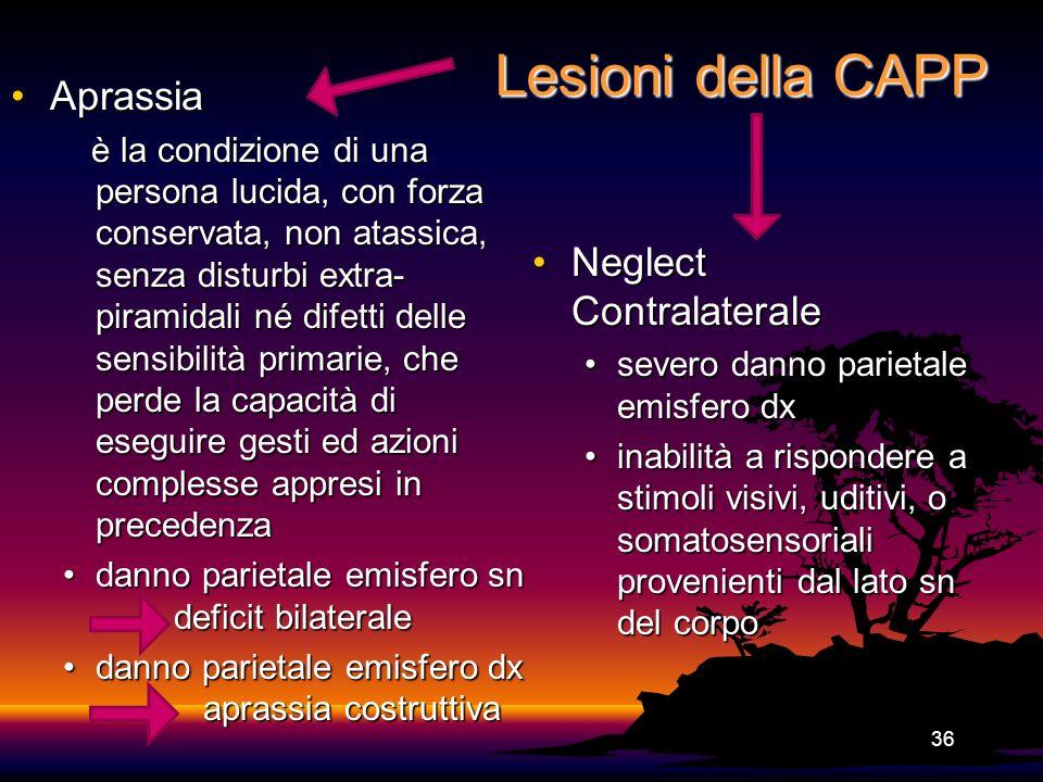 Lesioni della CAPP Aprassia Neglect Contralaterale