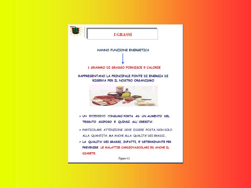 Vediamo più da vicino le caratteristiche dei diversi alimenti