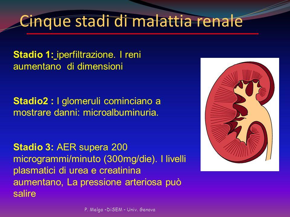 Cinque stadi di malattia renale
