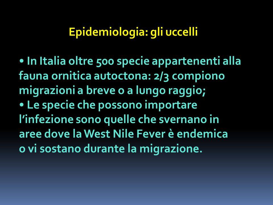 Epidemiologia: gli uccelli