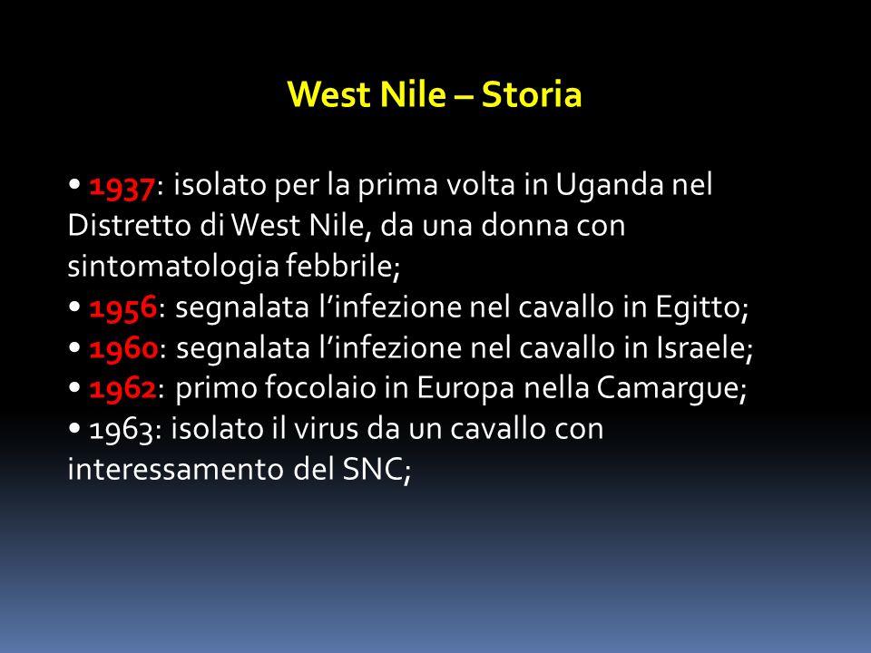 West Nile – Storia • 1937: isolato per la prima volta in Uganda nel