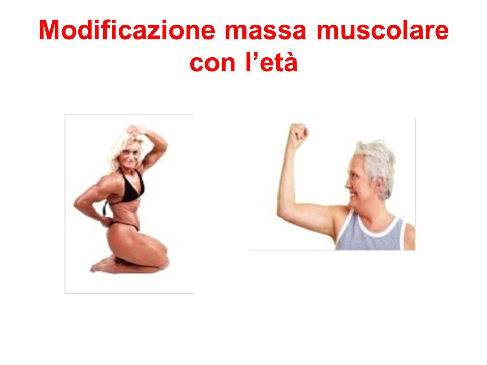 Modificazione massa muscolare con l'età