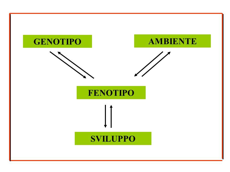 GENOTIPO AMBIENTE FENOTIPO SVILUPPO