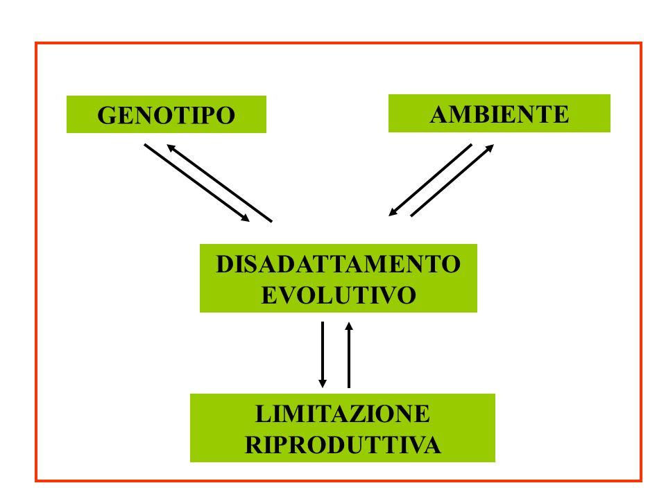 DISADATTAMENTO EVOLUTIVO LIMITAZIONE RIPRODUTTIVA