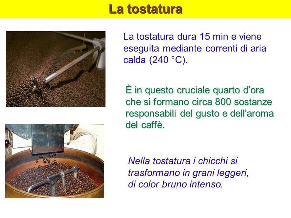 La tostatura La tostatura dura 15 min e viene eseguita mediante correnti di aria calda (240 °C).