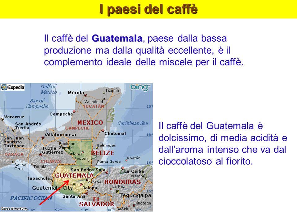 I paesi del caffè