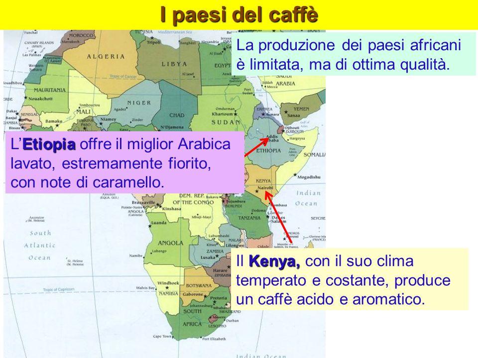 I paesi del caffèLa produzione dei paesi africani è limitata, ma di ottima qualità.