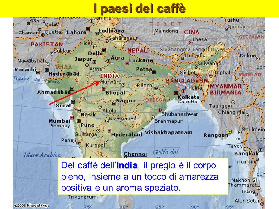 I paesi del caffèDel caffè dell'India, il pregio è il corpo pieno, insieme a un tocco di amarezza positiva e un aroma speziato.