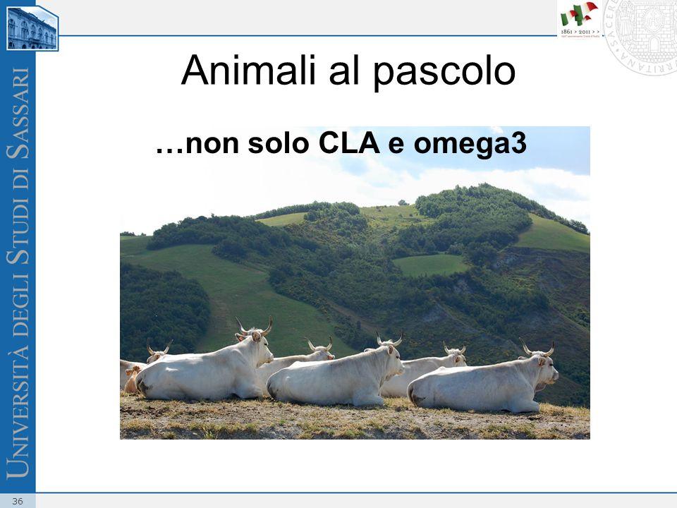 Animali al pascolo …non solo CLA e omega3
