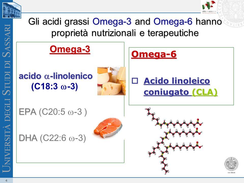 Gli acidi grassi Omega-3 and Omega-6 hanno proprietà nutrizionali e terapeutiche