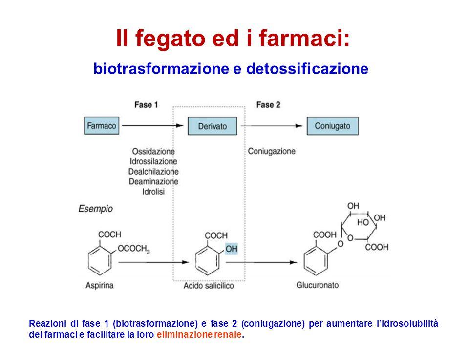 biotrasformazione e detossificazione