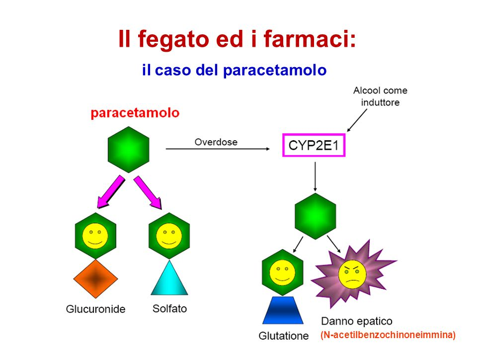 il caso del paracetamolo