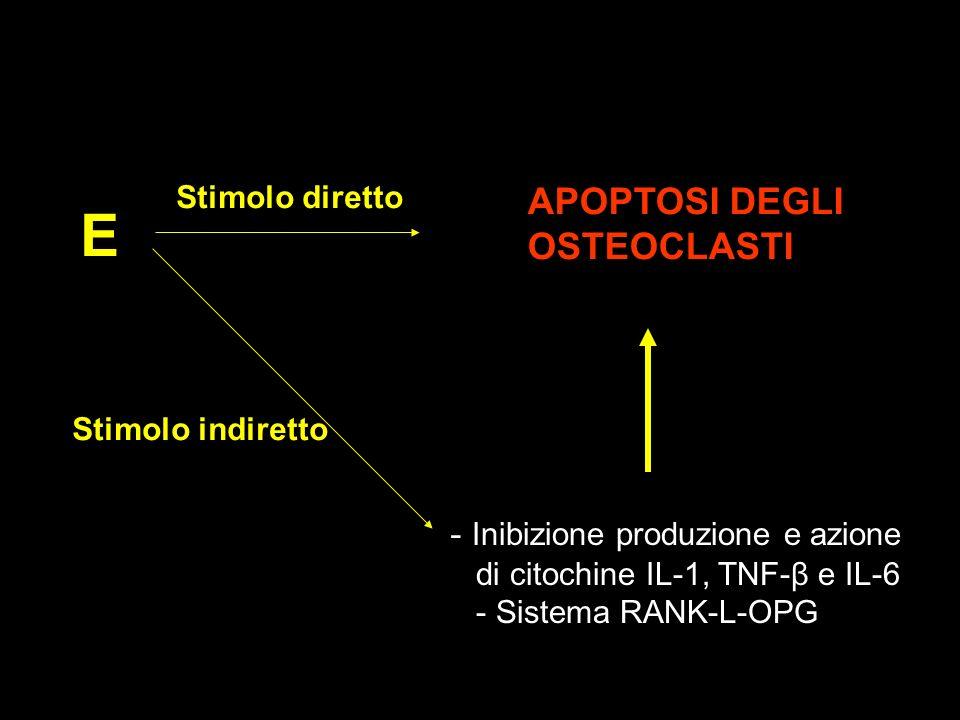 E APOPTOSI DEGLI OSTEOCLASTI - Inibizione produzione e azione