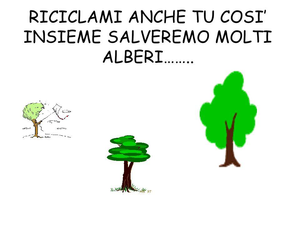 RICICLAMI ANCHE TU COSI' INSIEME SALVEREMO MOLTI ALBERI……..