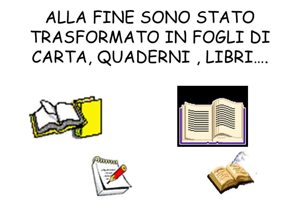 ALLA FINE SONO STATO TRASFORMATO IN FOGLI DI CARTA, QUADERNI , LIBRI….
