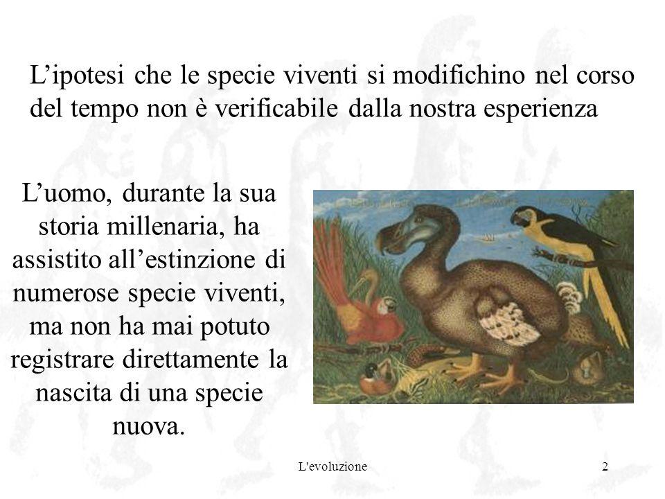 L'ipotesi che le specie viventi si modifichino nel corso del tempo non è verificabile dalla nostra esperienza