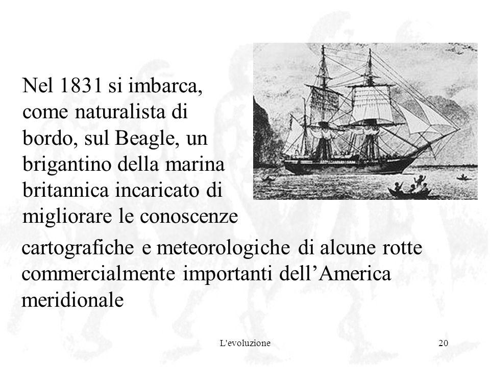 Nel 1831 si imbarca, come naturalista di bordo, sul Beagle, un brigantino della marina britannica incaricato di migliorare le conoscenze
