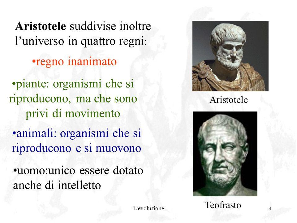 Aristotele suddivise inoltre l'universo in quattro regni: