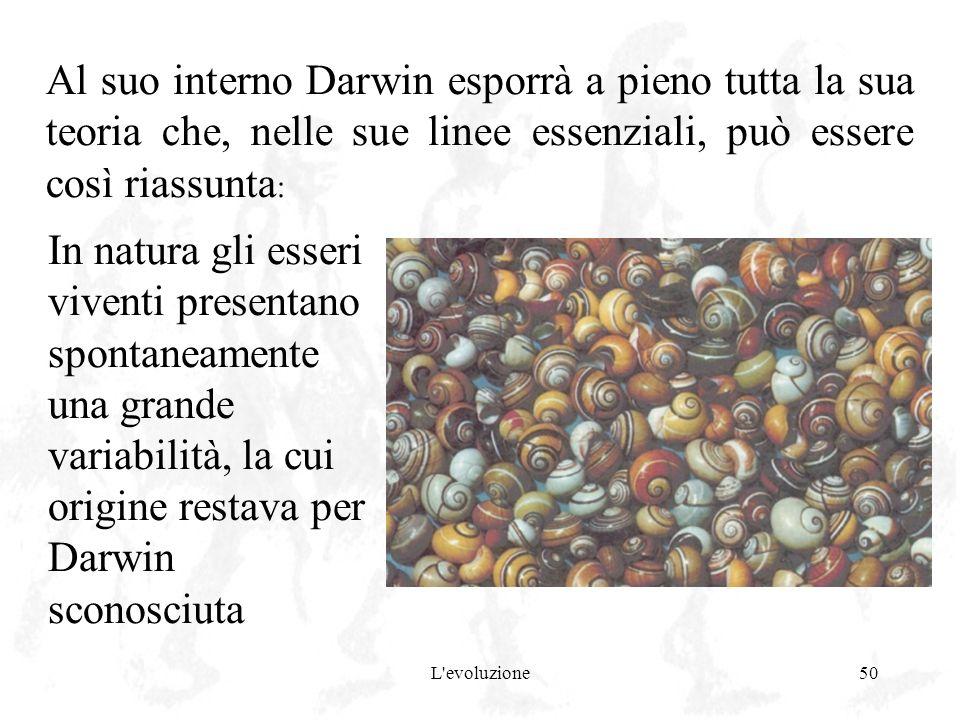 Al suo interno Darwin esporrà a pieno tutta la sua teoria che, nelle sue linee essenziali, può essere così riassunta: