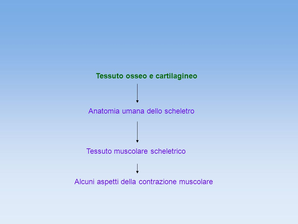 Tessuto osseo e cartilagineo
