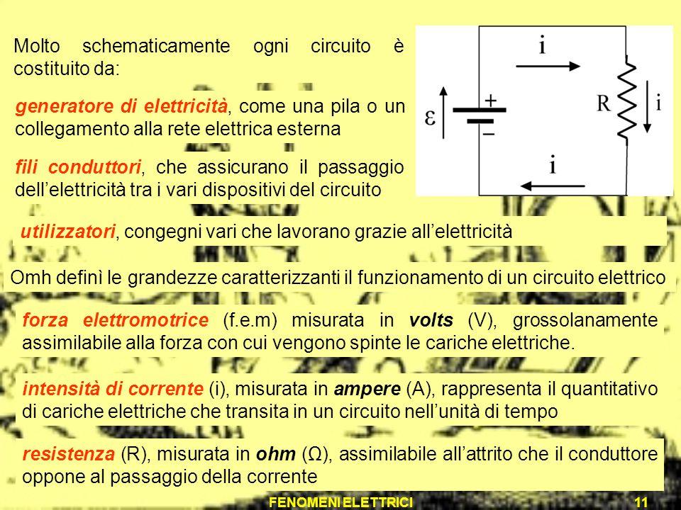 Molto schematicamente ogni circuito è costituito da: