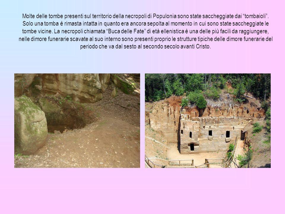Molte delle tombe presenti sul territorio della necropoli di Populonia sono state saccheggiate dai tombaioli .
