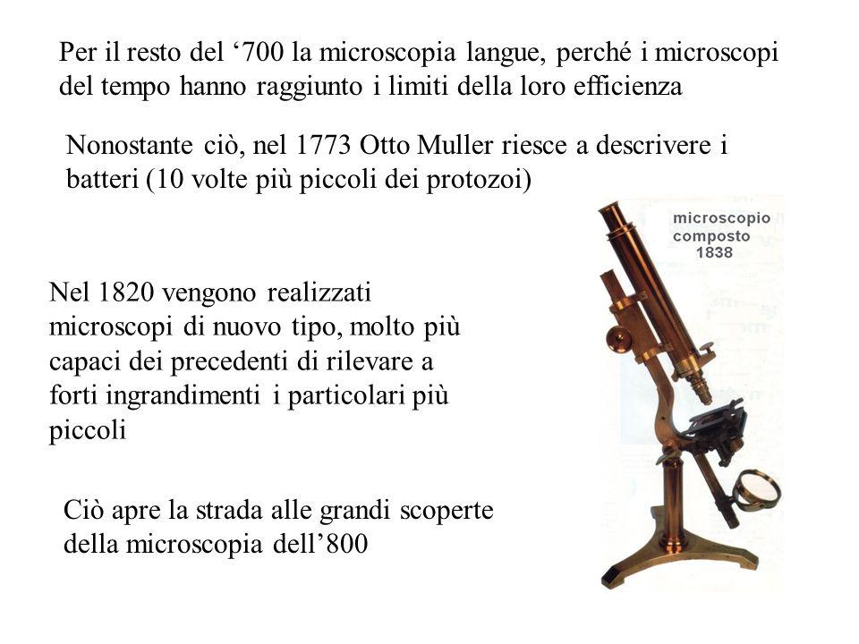 Per il resto del '700 la microscopia langue, perché i microscopi del tempo hanno raggiunto i limiti della loro efficienza