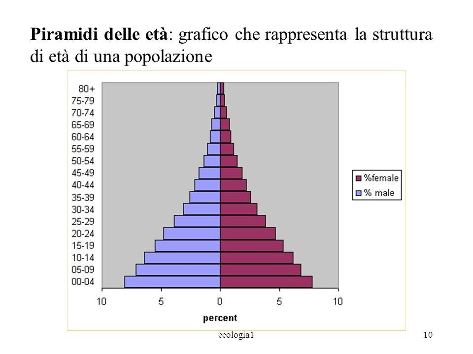 Piramidi delle età: grafico che rappresenta la struttura di età di una popolazione
