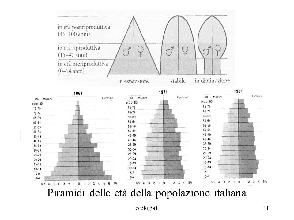 Piramidi delle età della popolazione italiana