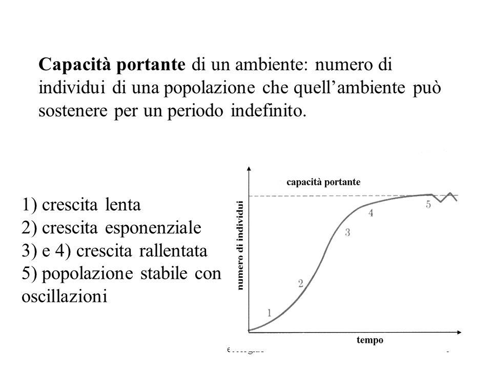 2) crescita esponenziale 3) e 4) crescita rallentata