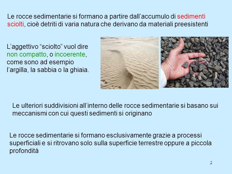 Le rocce sedimentarie si formano a partire dall'accumulo di sedimenti sciolti, cioè detriti di varia natura che derivano da materiali preesistenti