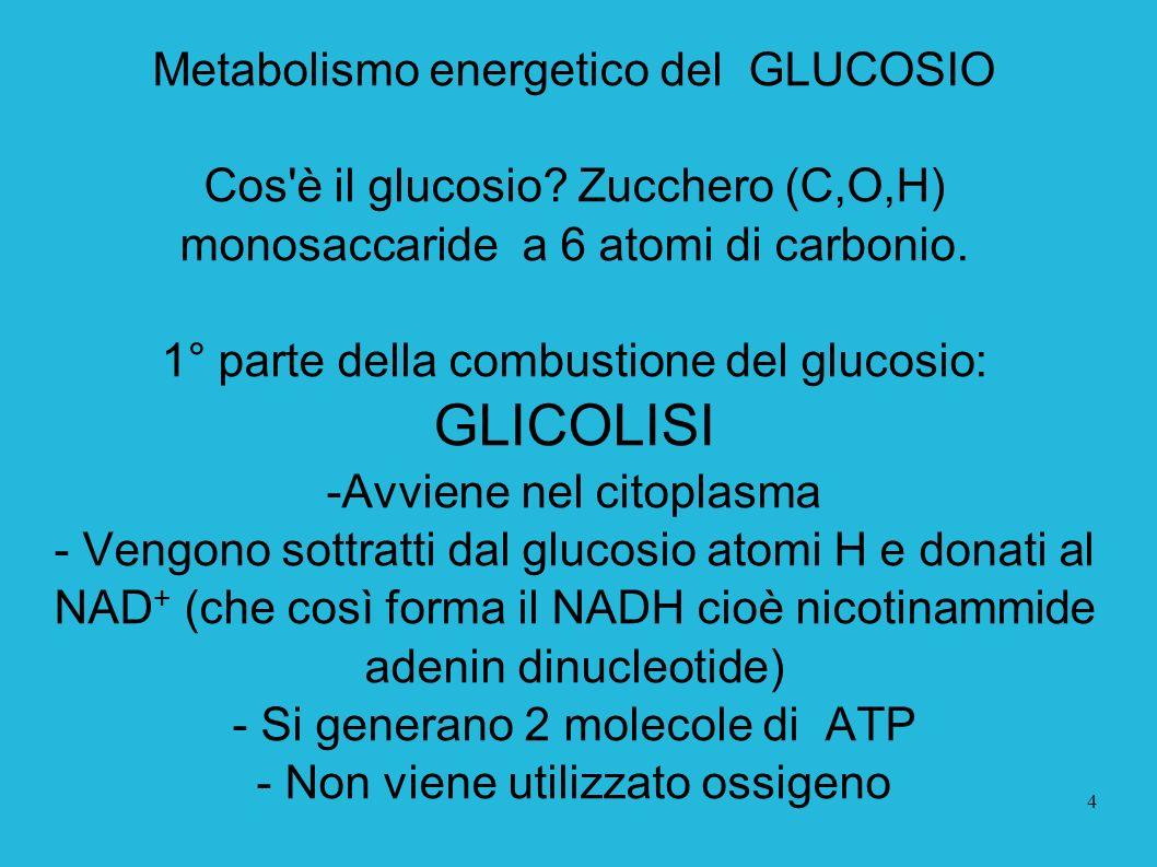 GLICOLISI Metabolismo energetico del GLUCOSIO