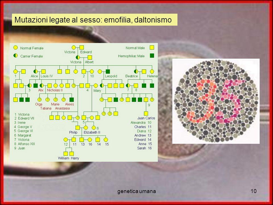 Mutazioni legate al sesso: emofilia, daltonismo