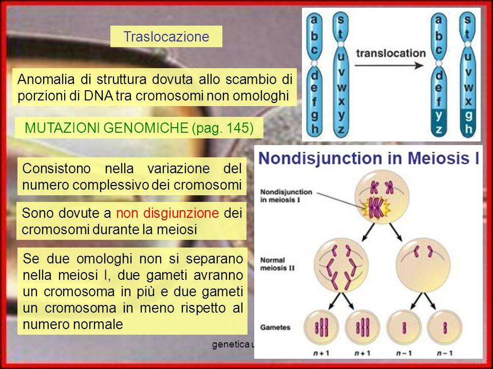 MUTAZIONI GENOMICHE (pag. 145)