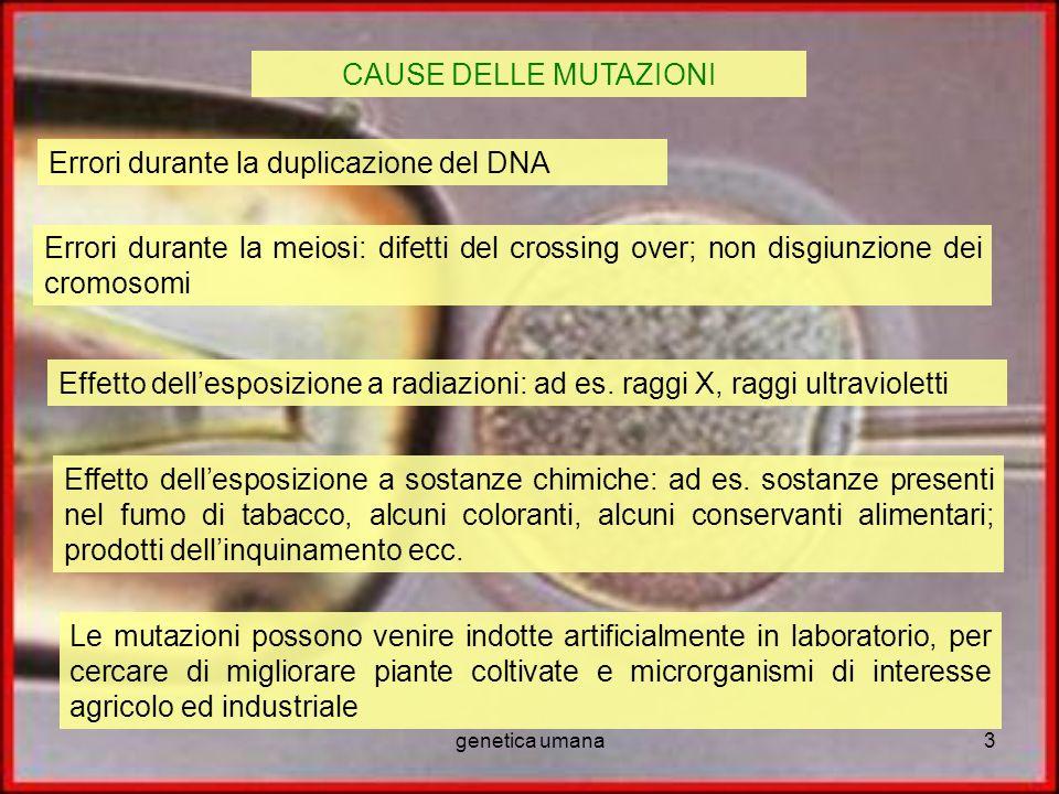 Errori durante la duplicazione del DNA
