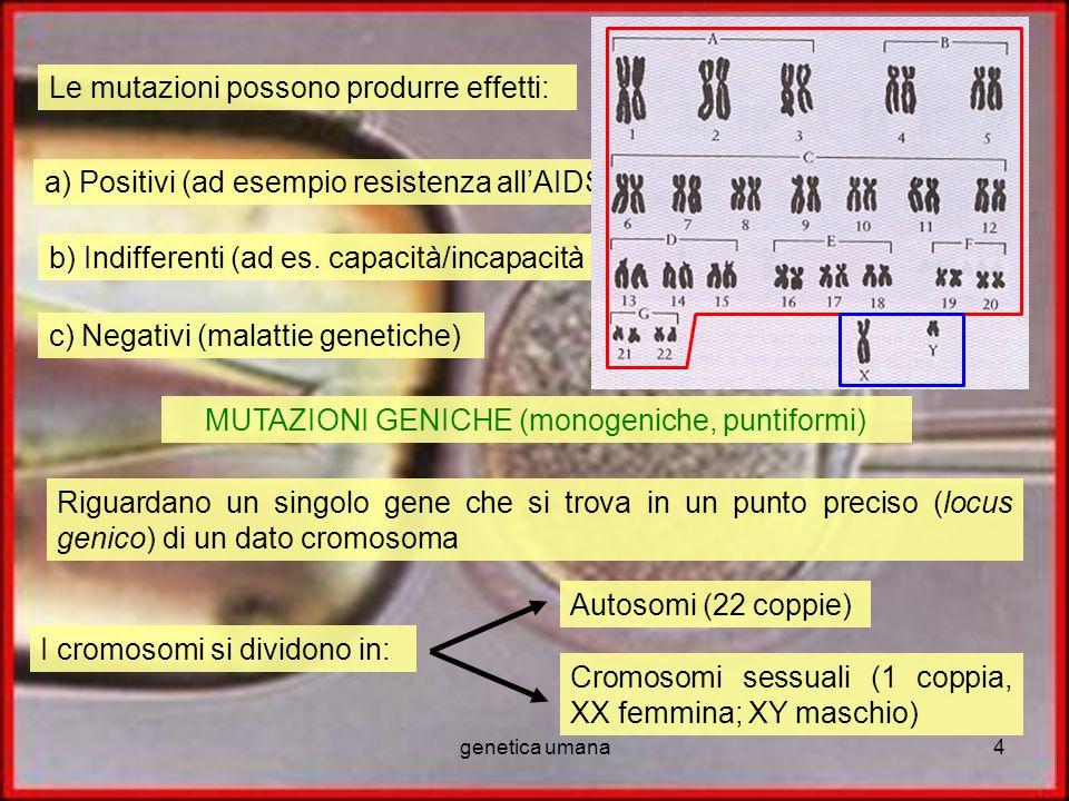 MUTAZIONI GENICHE (monogeniche, puntiformi)