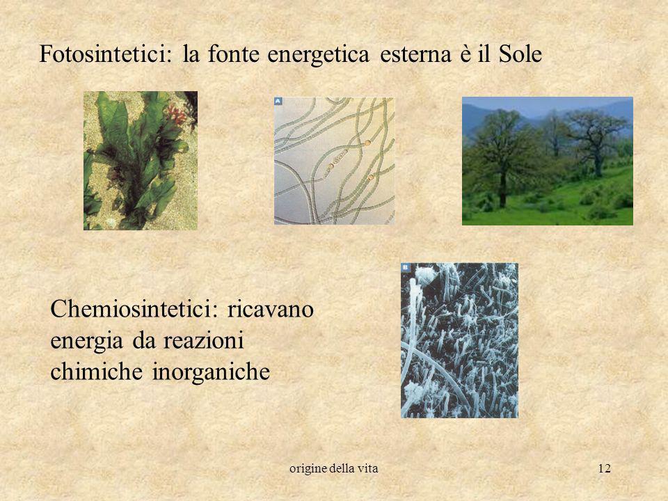 Fotosintetici: la fonte energetica esterna è il Sole