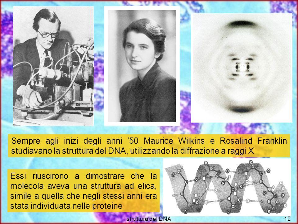 Sempre agli inizi degli anni '50 Maurice Wilkins e Rosalind Franklin studiavano la struttura del DNA, utilizzando la diffrazione a raggi X