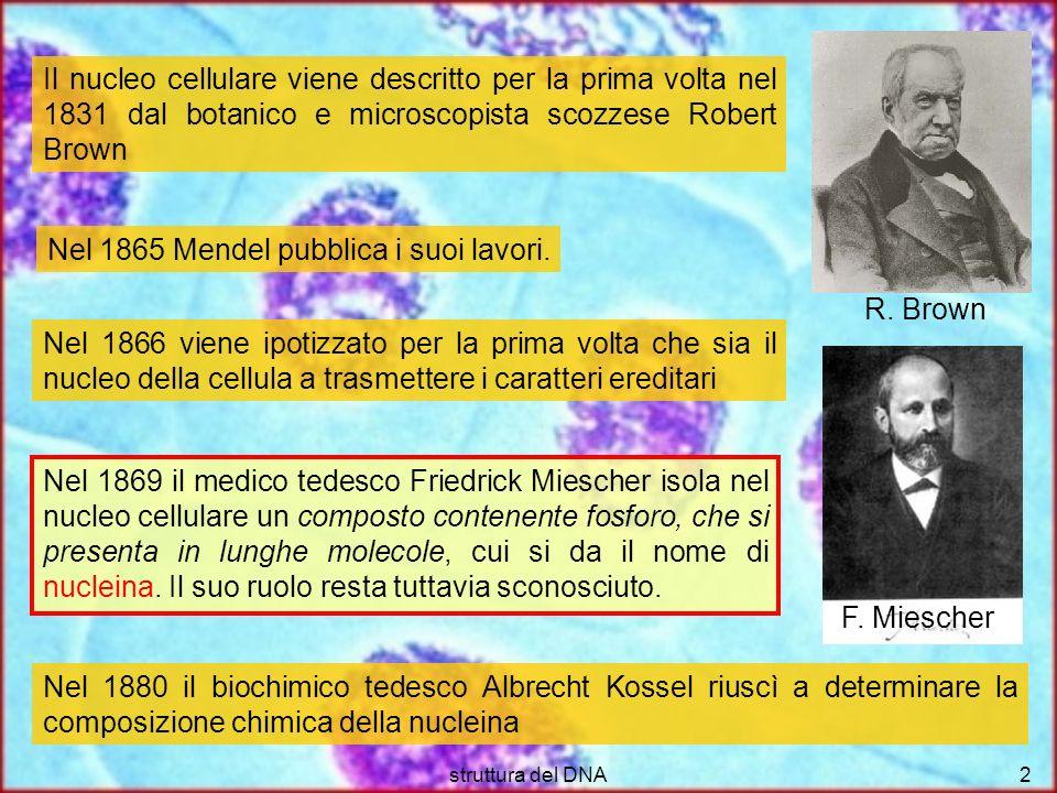 Nel 1865 Mendel pubblica i suoi lavori.