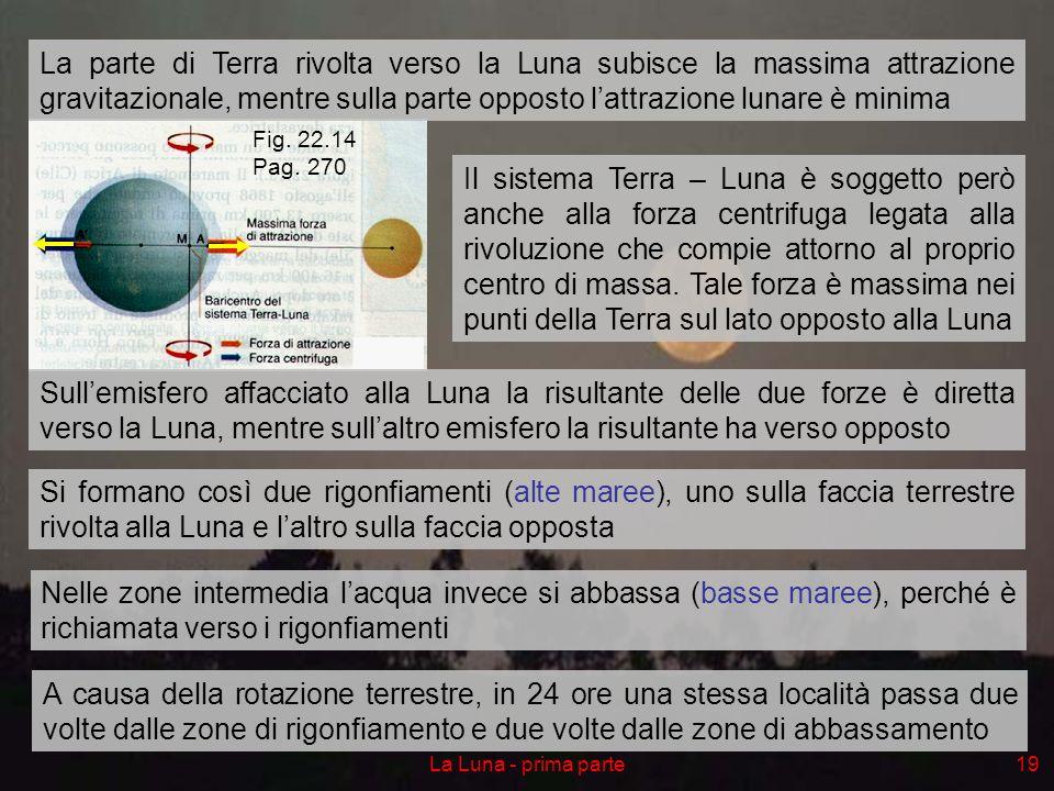 La parte di Terra rivolta verso la Luna subisce la massima attrazione gravitazionale, mentre sulla parte opposto l'attrazione lunare è minima