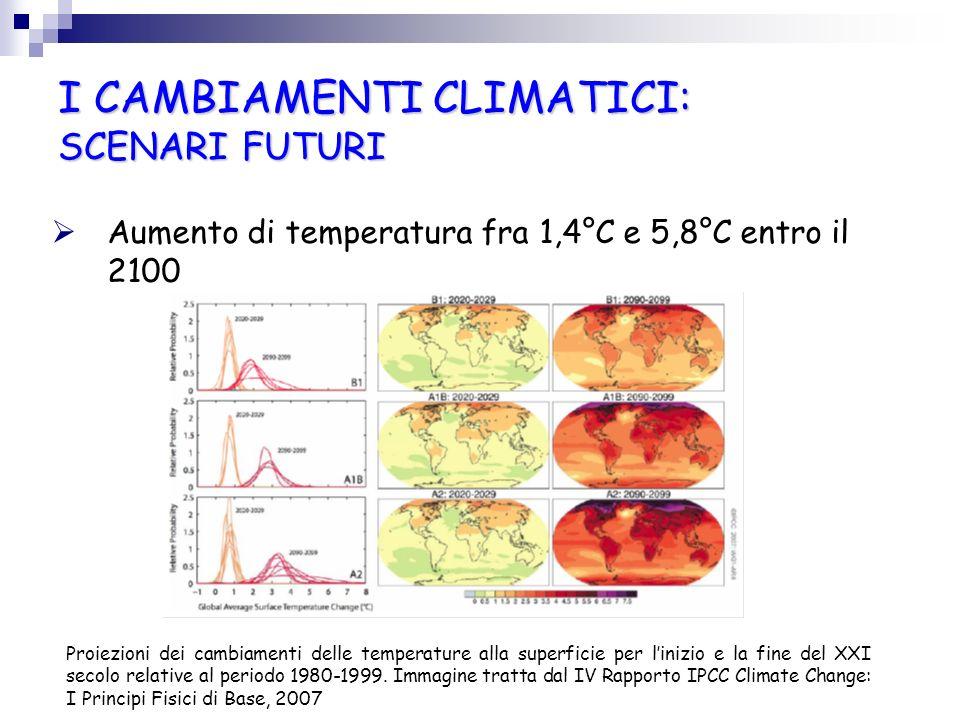 I CAMBIAMENTI CLIMATICI: SCENARI FUTURI