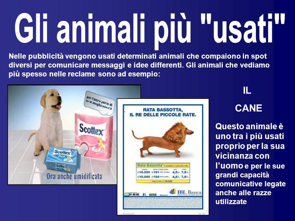Gli animali più usati IL CANE