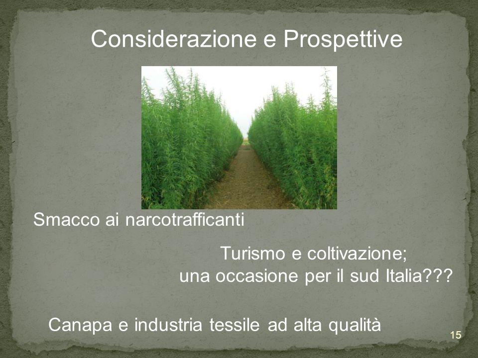 Considerazione e Prospettive