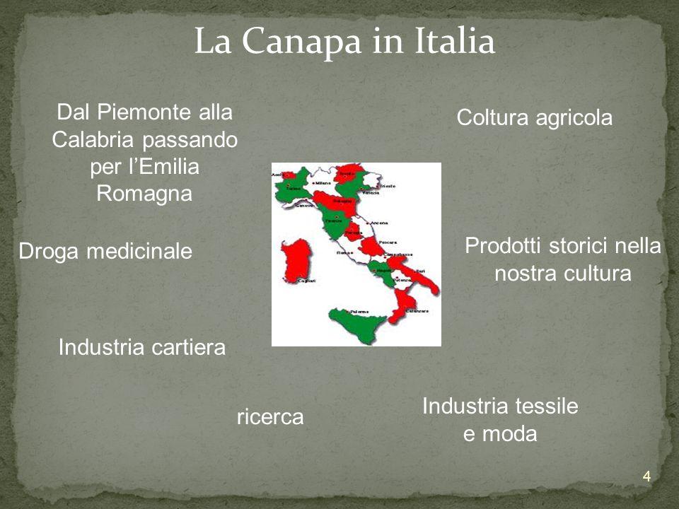 La Canapa in Italia Dal Piemonte alla Calabria passando per l'Emilia Romagna. Coltura agricola. Prodotti storici nella nostra cultura.