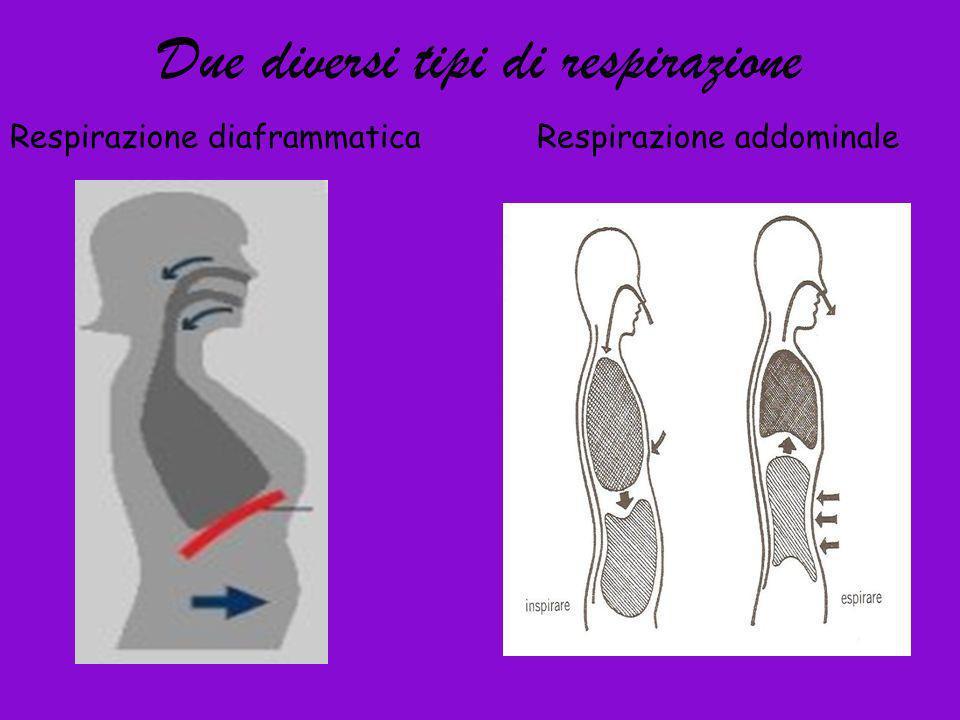Due diversi tipi di respirazione