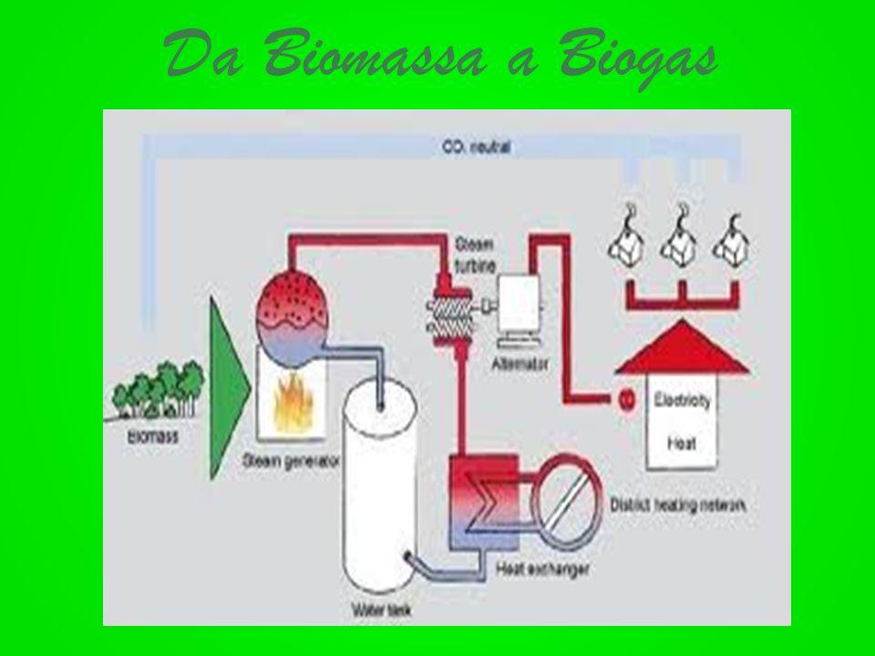Da Biomassa a Biogas