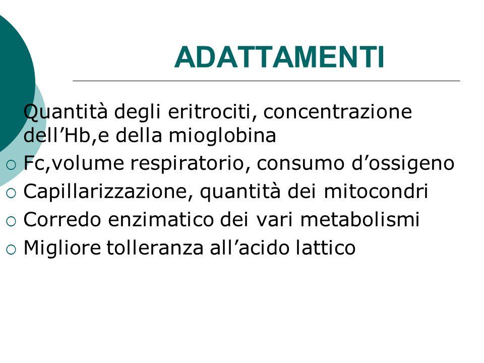 ADATTAMENTI Quantità degli eritrociti, concentrazione dell'Hb,e della mioglobina. Fc,volume respiratorio, consumo d'ossigeno.