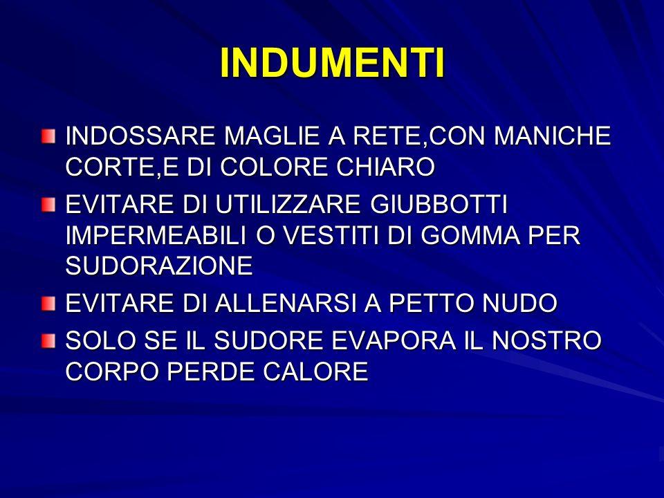 INDUMENTI INDOSSARE MAGLIE A RETE,CON MANICHE CORTE,E DI COLORE CHIARO