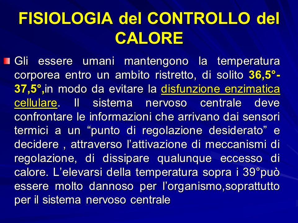 FISIOLOGIA del CONTROLLO del CALORE