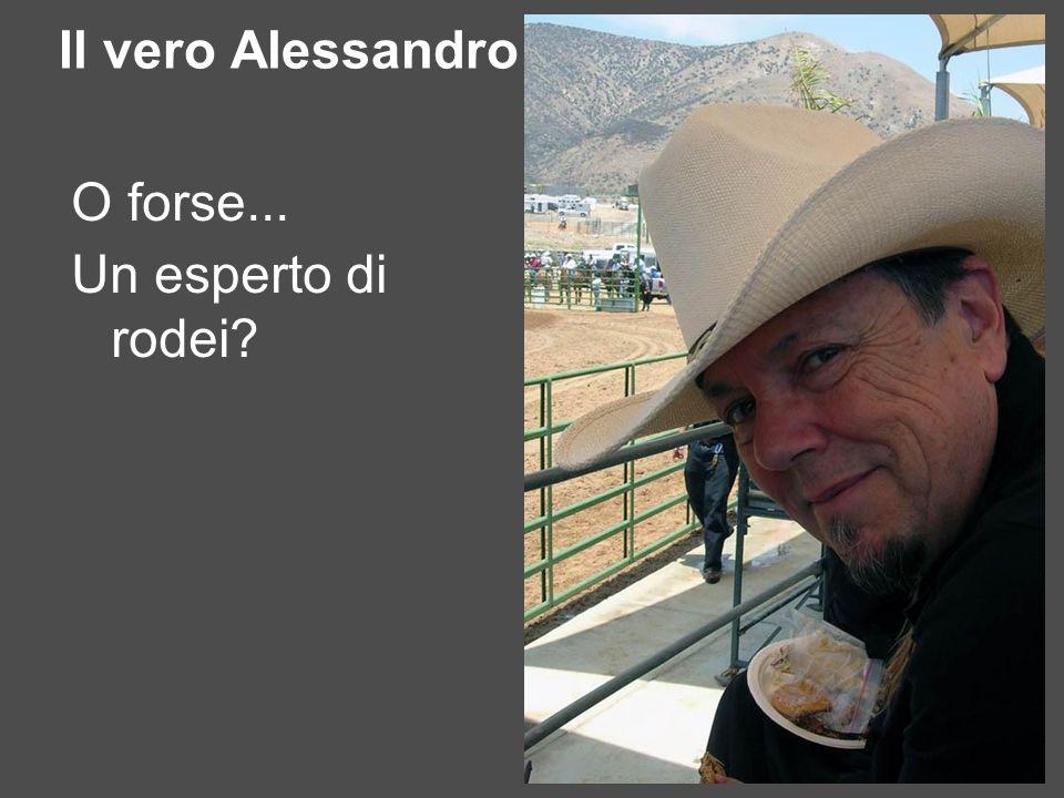Il vero Alessandro O forse... Un esperto di rodei